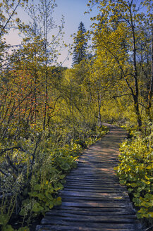 Croatia, Plitvice National Park, Footbridge in the woods - LOMF000156