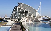 Spain, Valencia, Ciudad de las Artes y de las Ciencias, view to Museo de las Ciencias Principe Felipe - WWF003879