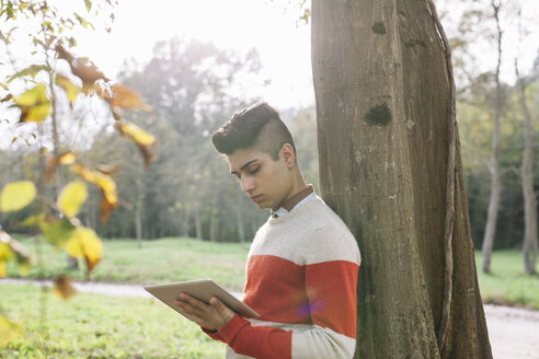 Young man leaning against tree trunk looking at digital tablet - ALBF000001