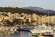 Spain, Balearic Islands, Mallorca, Palma de Mallorca, Bellver Castle and harbour - THAF001540