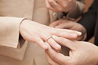 Exchanging of wedding rings - FCF000822