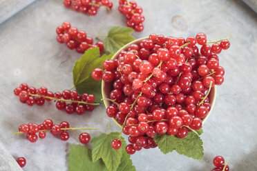 Bowl of red currants with leaves - SBDF002624
