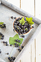 Bowl of black currants with leaves on a tray - SBDF002633