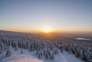 Germany, Saxony-Anhalt, Harz National Park, Wolfswarte in winter - PVCF000743