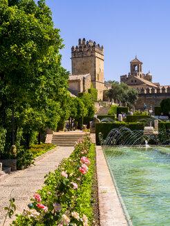 Spain, Andalusia, Alcazar de los Reyes Cristianos - AM004666