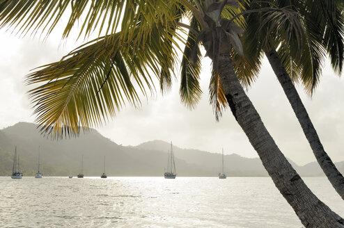 Panama, Isla Linton, bay with sailing boats - STEF000144