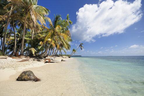 Panama, San Blas Islands, Cayos Los Grullos - STEF000153