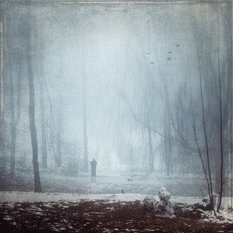 Germany, Man walking in winter forest - DWIF000674
