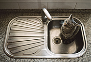 Tabby cat sitting in the kitchen sink, view from above - RAEF000813