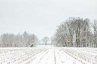 Germany, raised hide at the edge of a snow-covered field - ASCF000468