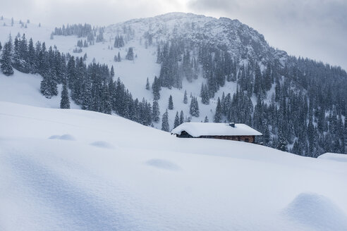 Austria, Salzburg State, Heutal, lonely alpine cabin in winter - HAMF000141