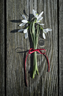 Bunch of snowdrops on wood - CRF002731