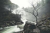 Spain, Galicia, Belelle river in Neda - RAE000817