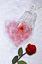 Fallen red wine glass next to red rose - KLRF000272