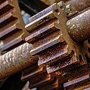 Rusty old gear, close-up - HOHF001387