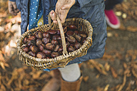 Girl carrying basket with chestnuts - ASCF000486