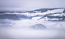 Austria, winter landscape near Hallein - STCF000180