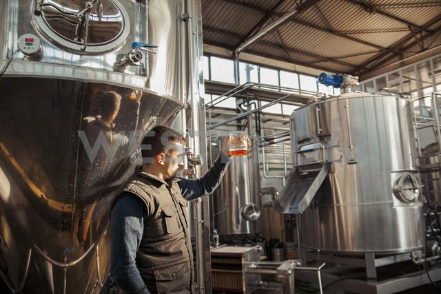 Young man working in craft brewery - ZEDF000048 - Zeljko Dangubic/Westend61