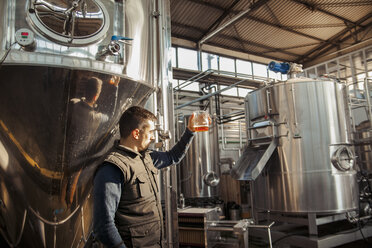 Young man working in craft brewery - ZEDF000048
