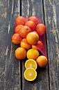 Net of oranges on dark wood - CSF027020