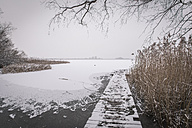 Germany, Brandenburg, Lake Rangsdorf, wooden boardwalk in winter - ASCF000502