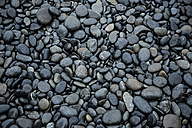 USA, Stones at beach - NGF000276
