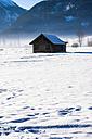 Austria, Tyrol, Lermoos, barn in snow - AMF004751