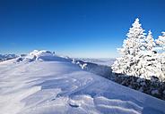 Germany, Upper Bavaria, Lenggries, snow-covered summit of Brauneck - SIEF006941