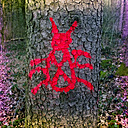 Germany, Bavaria, beetle marker at tree trunk - MAEF011292