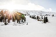 Austria, Turracher Hoehe, winter landscape in backlight - DAWF000520