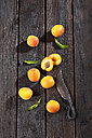 Whole and sliced apricots and an old knife on wood - CSF027120