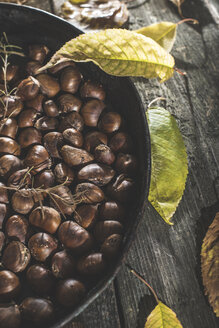 Pan of roasted sweet chestnuts and autumn leaves on wood - DEGF000650