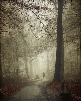 Germany, silhouette of man walking in winter forest - DWI000703