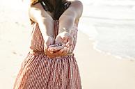 Venezuela, Isla Margarita, Juan Griego, girl's hands holding a small scallop, close-up - VABF000169