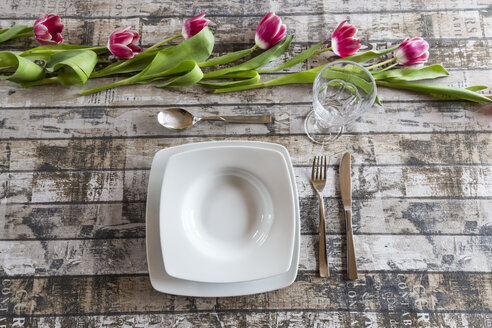 Place setting on table decorated with tulips - SARF002575