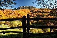 Spain, Asturias, Natural Park of Fuentes del Narcea, Degana and Ibias in autumn - DSGF000944