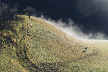 Germany, Bavaria, Berchtesgadener Land, mountain, boy on meadow - MJF001741