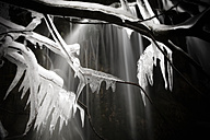 Spain, Cuenca, Waterfall at River Cuervo, frozen twigs, black and white - DSGF000975