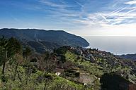Italy, Liguria, Cinque Terre - CSTF000952