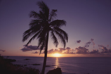 USA, Hawaii, Oahu, Waimea Bay in the evening - NGF000303