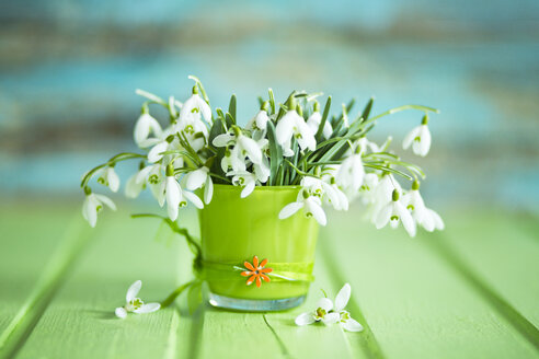 Glass with snowdrops - MAEF011361