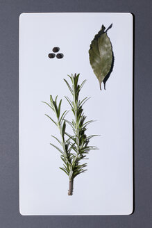 Bay leaf and twig of rosemary on white board - MN000160