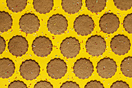 Rows of ginger cookies sprinkled with sugar granules on yellow background - VABF000263
