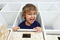 Portrait of playful boy in shelf - VABF000276