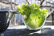 Glass bowl of leaf salad - DEGF000672