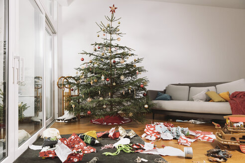 Living room on Christmas morning with torn up wrapping paper in front of the tree - MFF002790