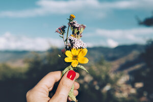 Woman's hand with red nails holding a small bouquet of wild flowers - GEMF000784