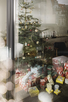 Decorated Christmas tree with presents as seen from outside - MFF002822