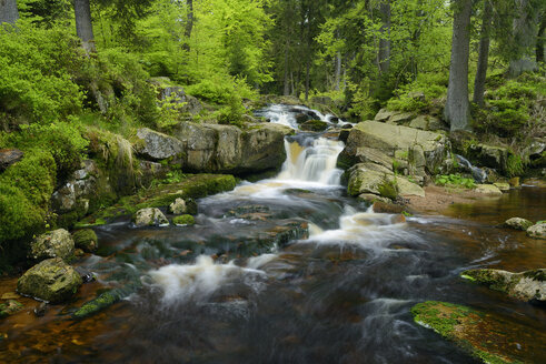 Germany, Lower Saxony, Harz, Waterfall of the mountain stream Warme Bode, Lower Bodefall - RUEF001646