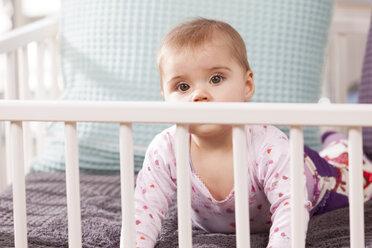Baby in playpen - DSF000628